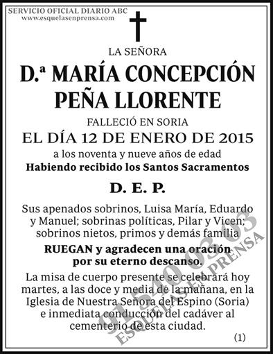 María Concepción Peña Llorente